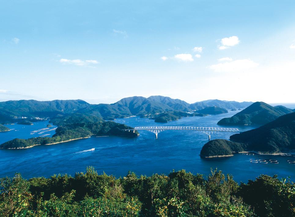 上五島の【生】本マグロ-0