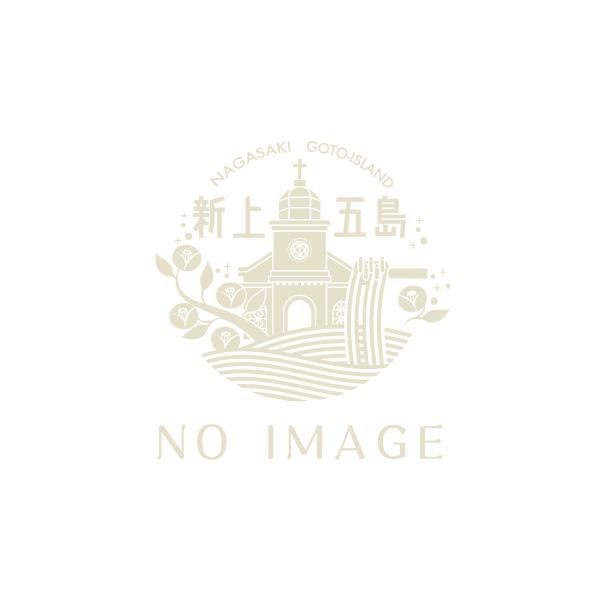 ビギナー必見!まるわかり新上五島町!!-1