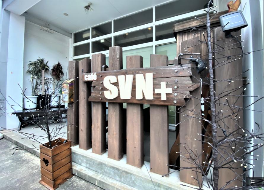 SVN+-1