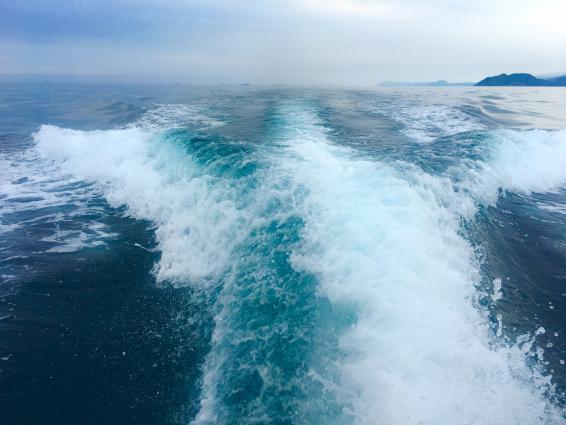 船釣り体験-5