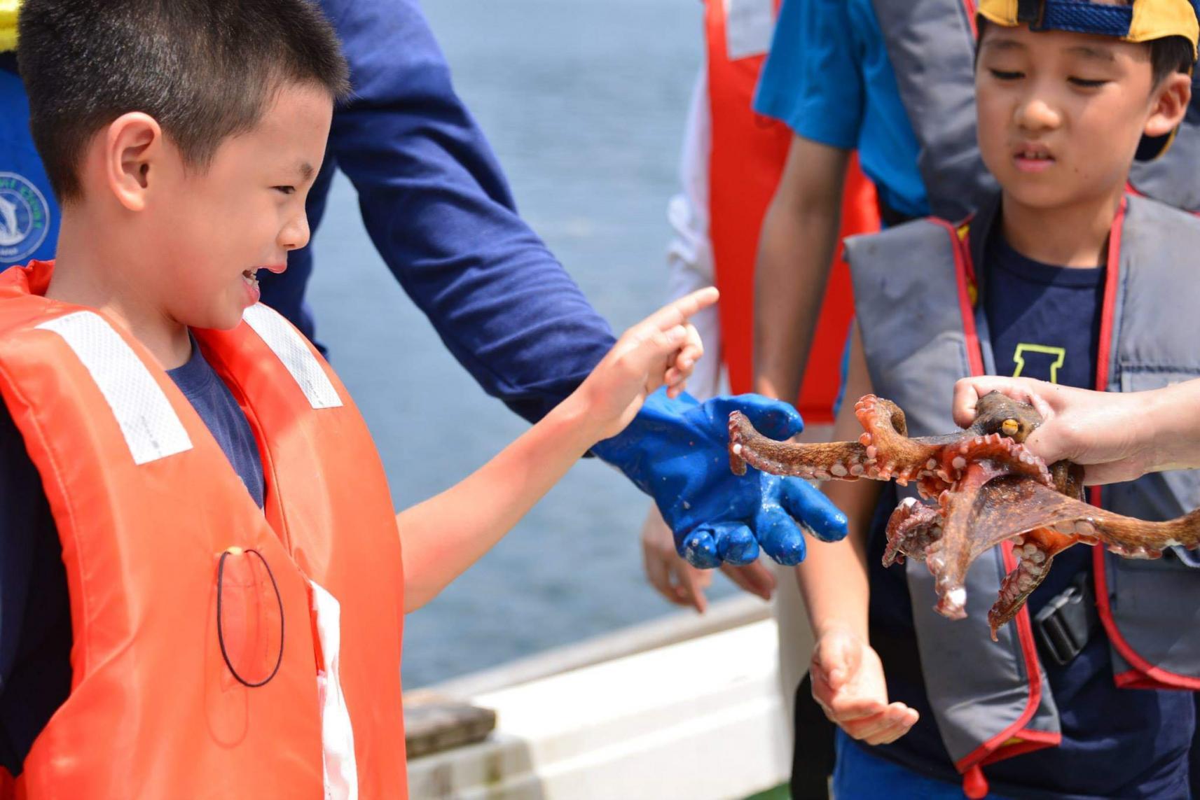 蛸つぼ漁-2