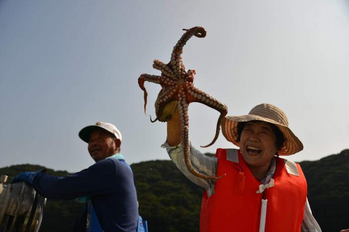 蛸つぼ漁-0