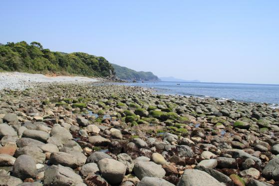 太田玉石海岸-1